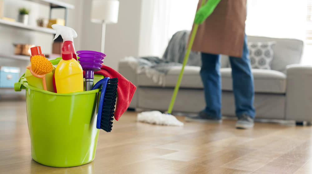 See These Detailed Reviews From Clean That Floor.